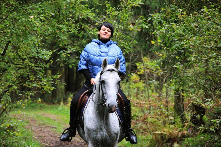 Прогулки на лошадях в лесу