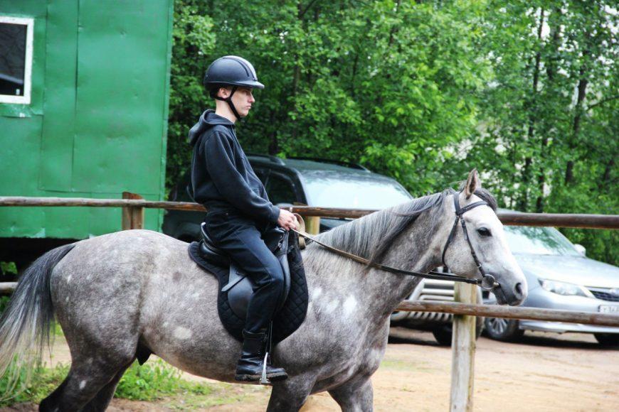 одежда для конного спорта