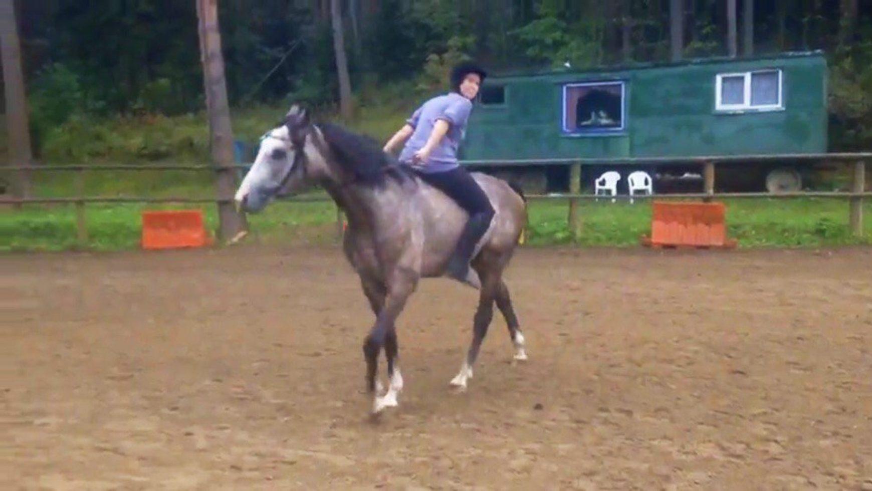 Как правильно сидеть на лошади?