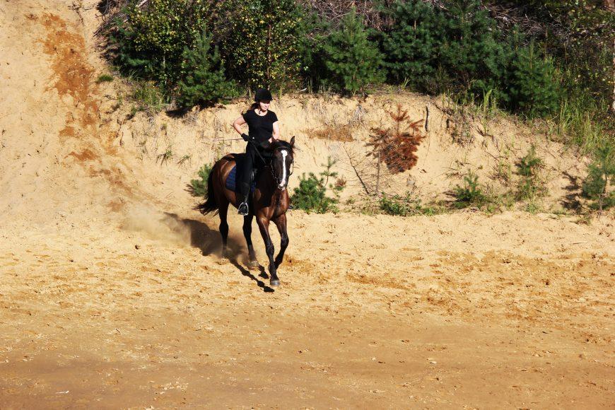 лошадь несёт