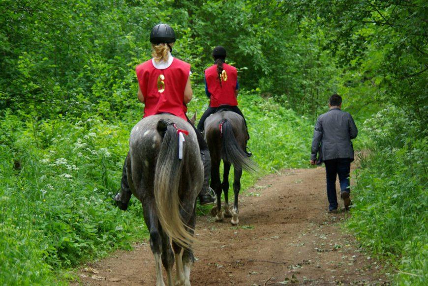 конные пробеги в петербурге