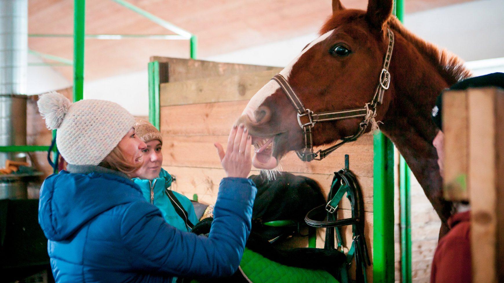 Кому стоит идти в конный спорт?