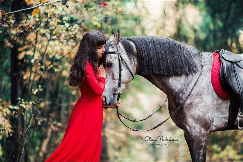 Честная статья о наших лошадях
